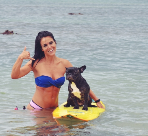 canisurf runwithurdog sport chien surf
