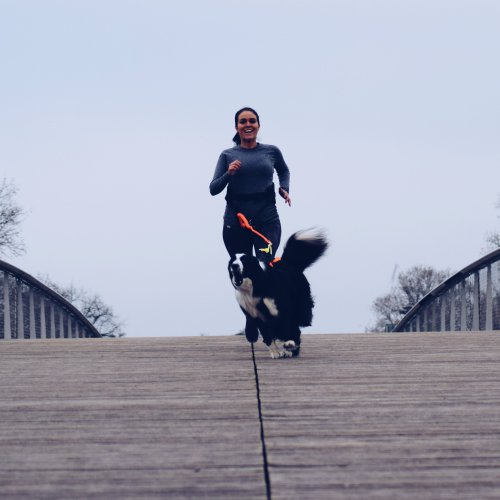 runwithurdog hiver courir avec son chien