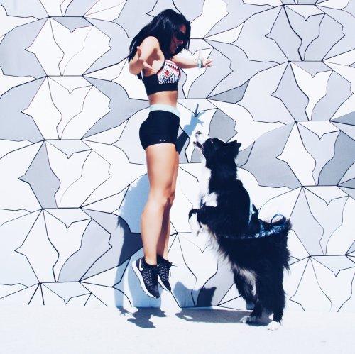 runwithurdog dogs of paris