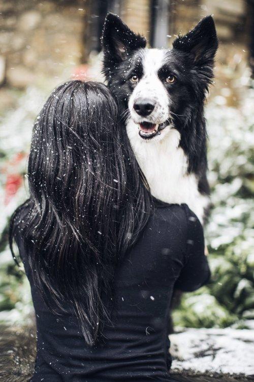 runwithurdog neige hiver paris