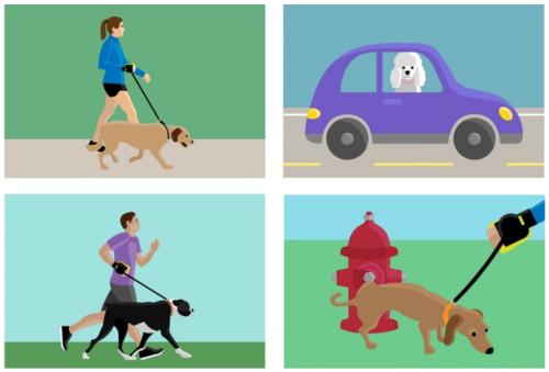 streamleash laisse rétractable courir avec son chien runwithurdog