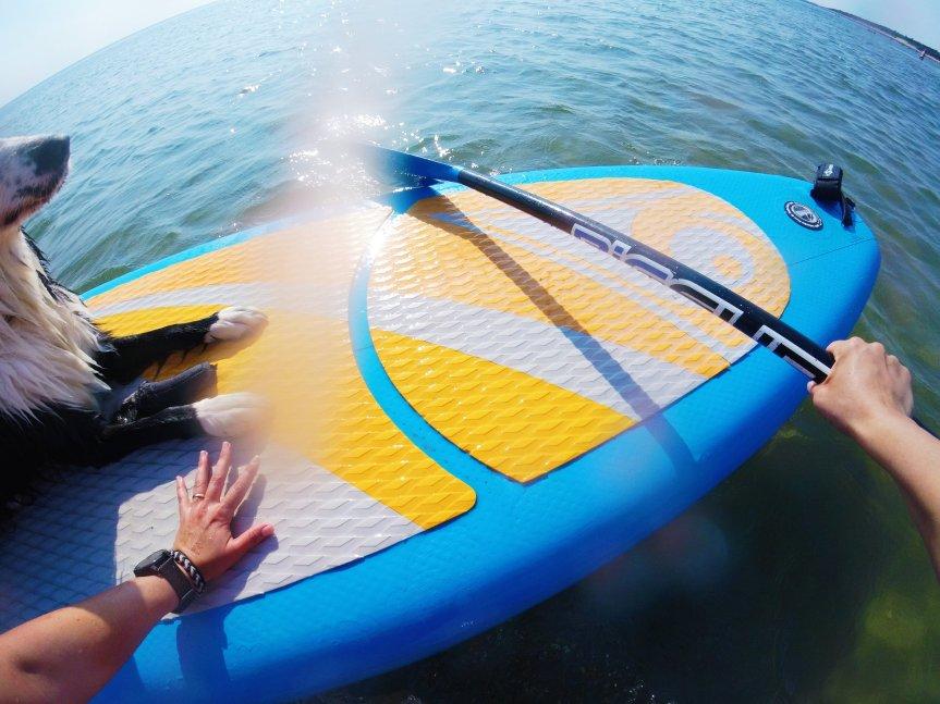 Nous avons essayé lecani-paddle