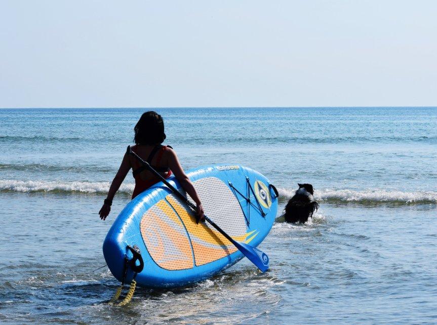 runwithurdog paddle stand up sup border collie