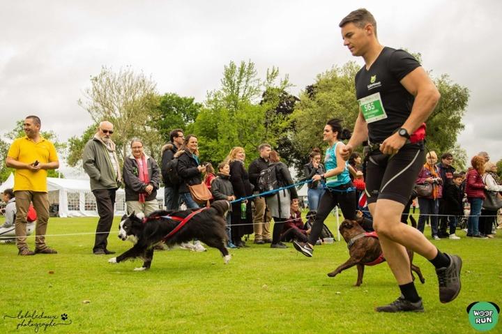 runwithurdog woof run 2019