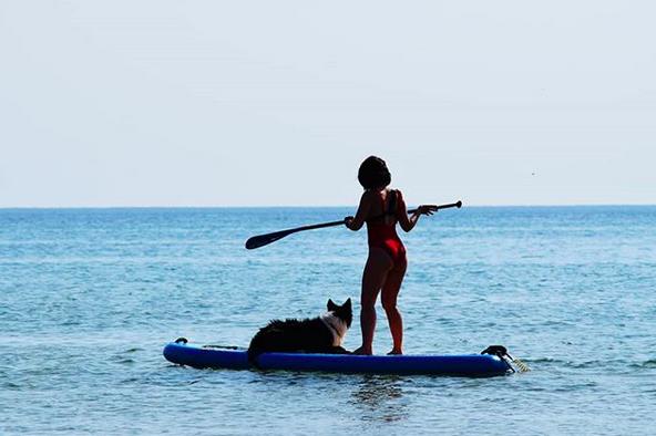 canipaddle paddle avec son chien runwithurdog