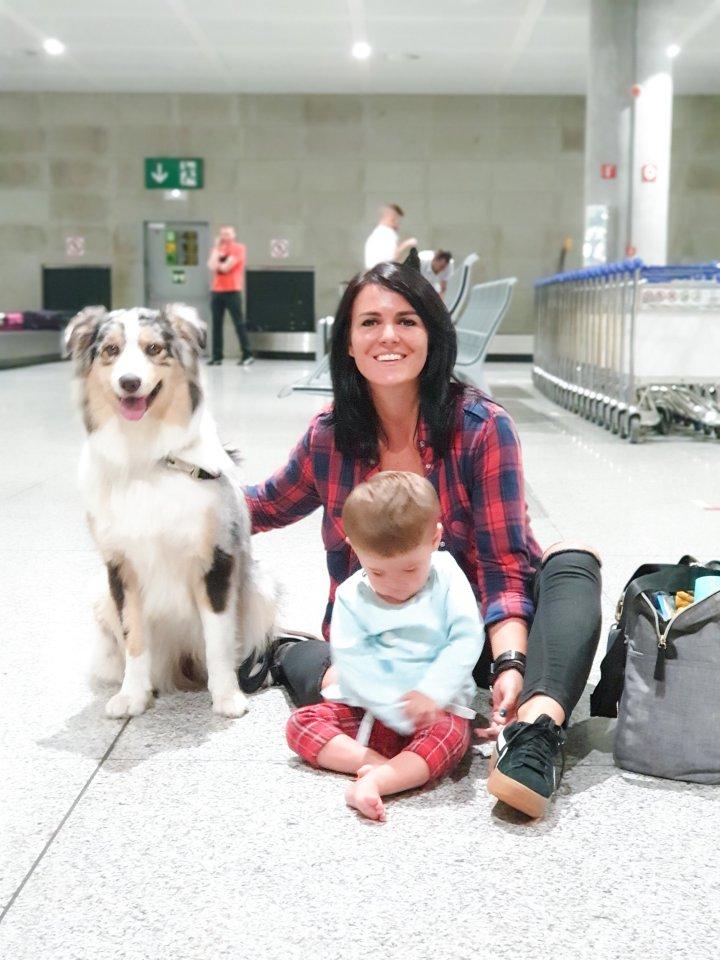 Voyager en avion avec son chien – retour sur notre premièreexpérience
