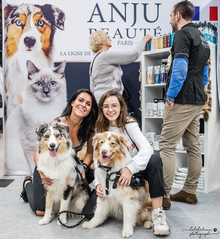 runwithurdog la mini meute anju beauté animal expo 2019