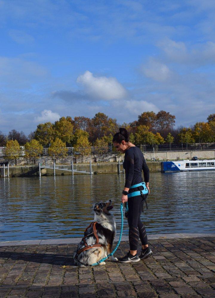 Commencer le canicross avec un jeune chien : Jazz s'est lancée dans l'aventure