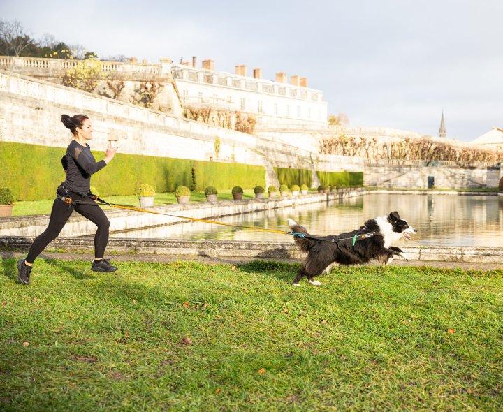 Courir avec son chien – évitez lesdérives