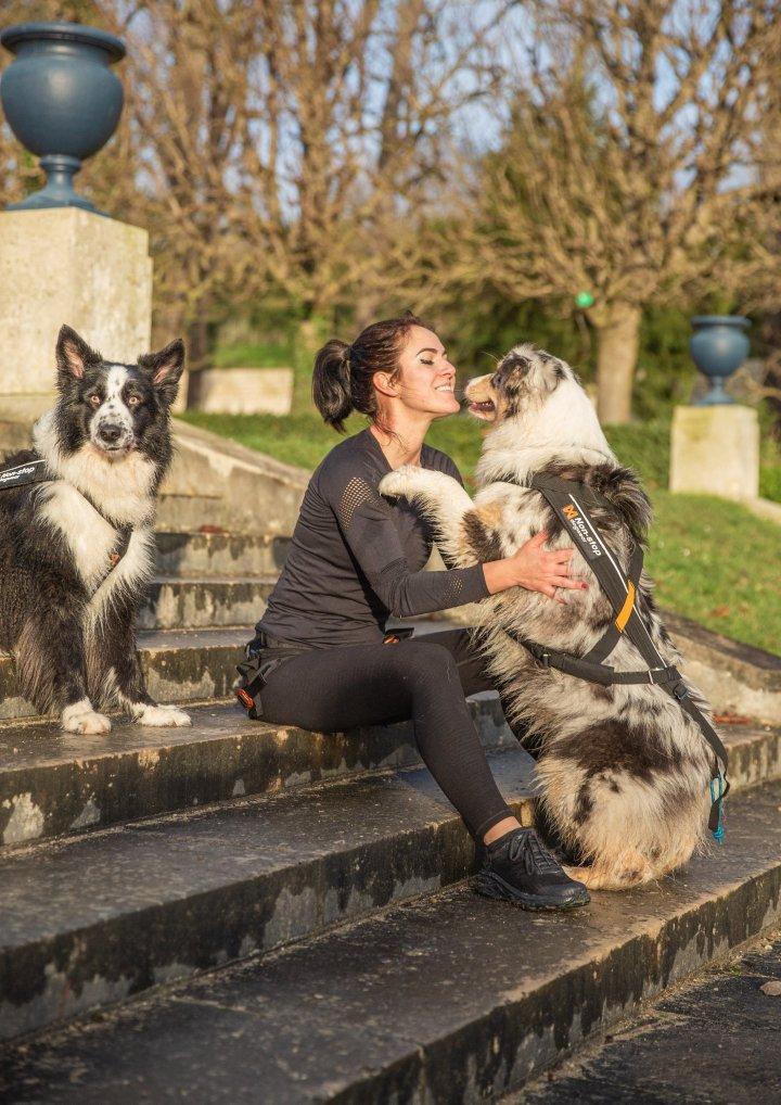 canicross nonstop dogwear runwithurdog