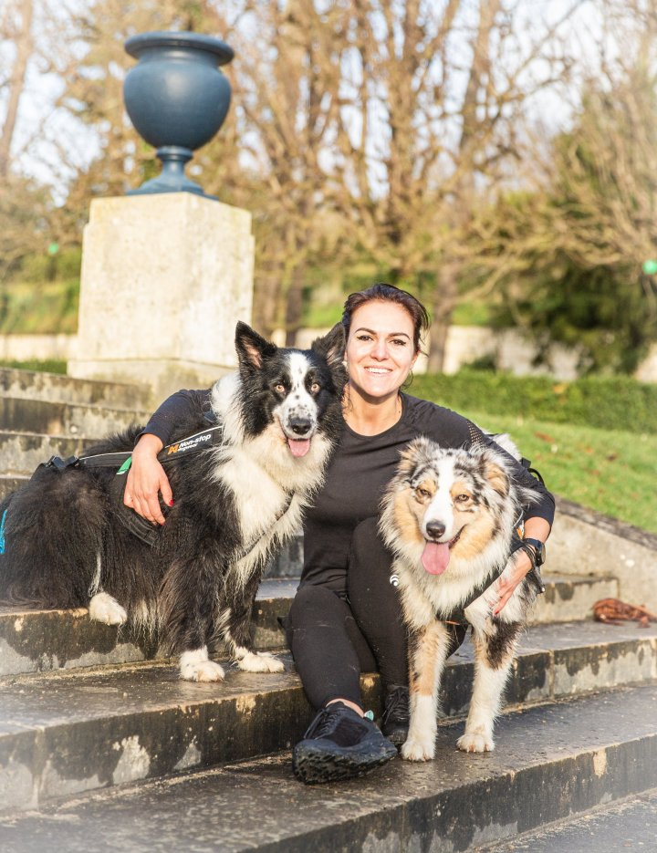 border collie berger australien runwithurdog