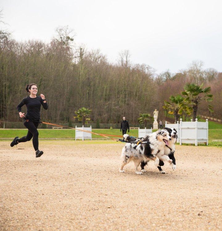 canicross runwithurdog